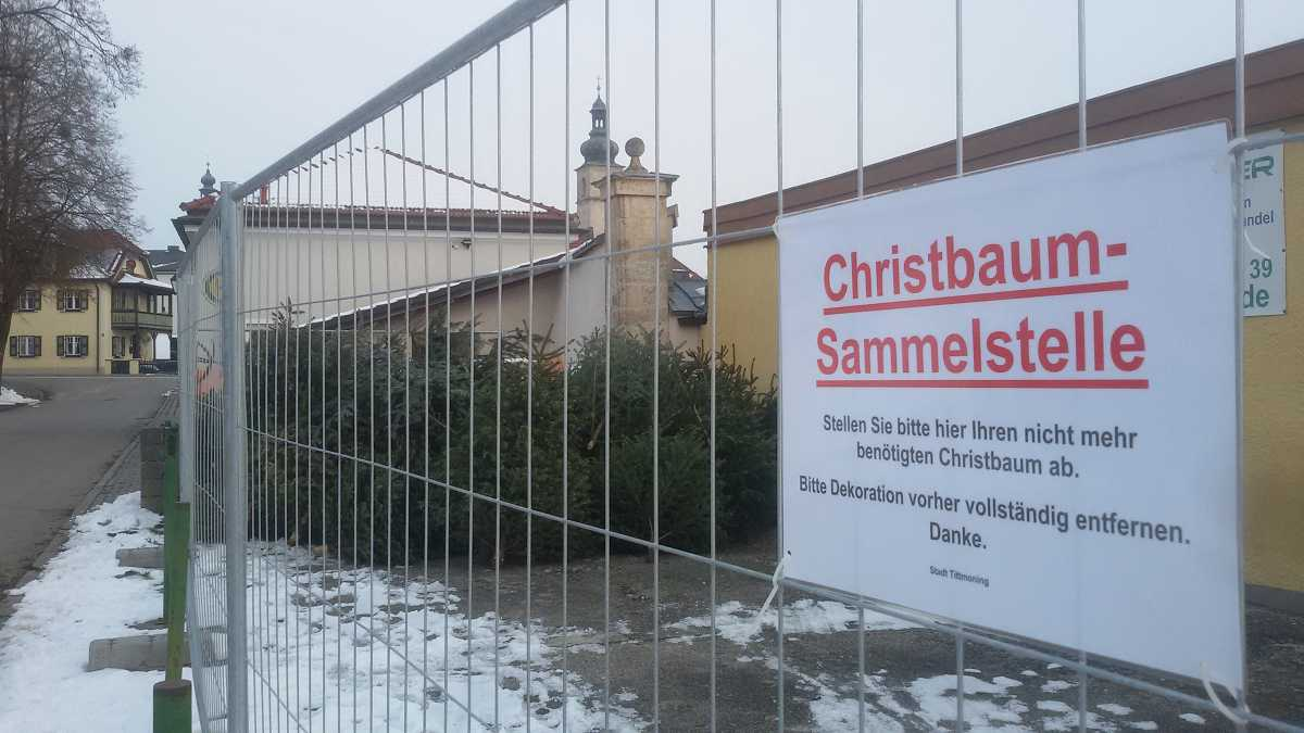 Christbaum-Sammelstelle am Friedhof